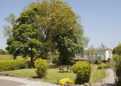 Hafod Caravan garden